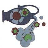 【アストロカウンセラー・まーさ】水瓶座の考えの読み取り方