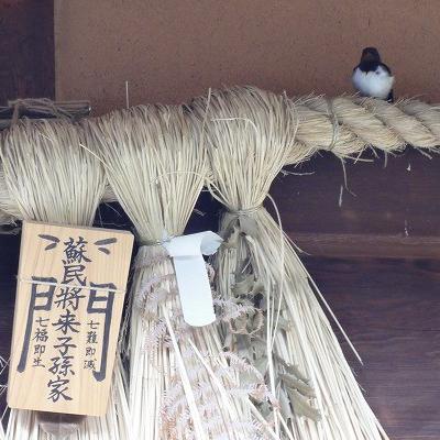 天野里咲の天照咲く咲く笑う開運世界『伊勢神宮と猿田彦神社と開運つばめさん』
