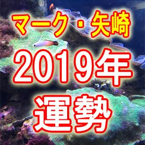 2019年の運勢【恋・仕事・人間関係・金運】訪れる幸運な出来事