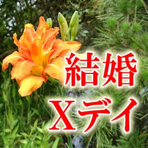 【結婚Xデイ】出会いとシチュエーション/プロセス/挙式⇒幸福の鍵