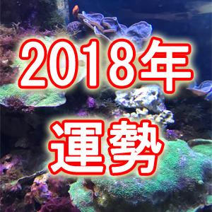 2018年の運勢【恋・仕事・人間関係・金運】訪れる幸運な出来事