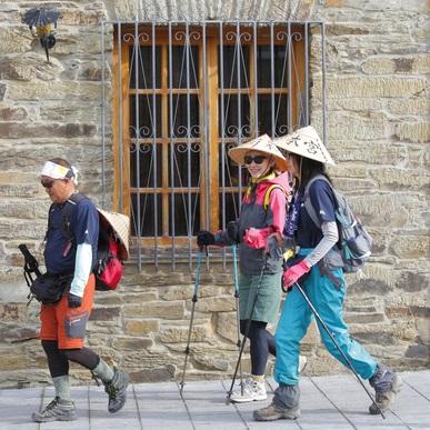 世界にたった二つの「道」の世界遺産「熊野古道とスペイン サンティアゴ巡礼道」姉妹道20周年! 「よみがえりの聖地」へ恩返し